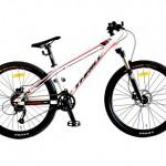 Harga Sepeda Merek Wimcycle Boxer