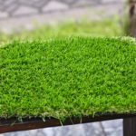 Rumput Sintesis Art Natural Green dan Art Semi Green