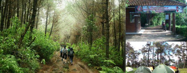 Trekking di Taman Hutan Jayagiri Lembang